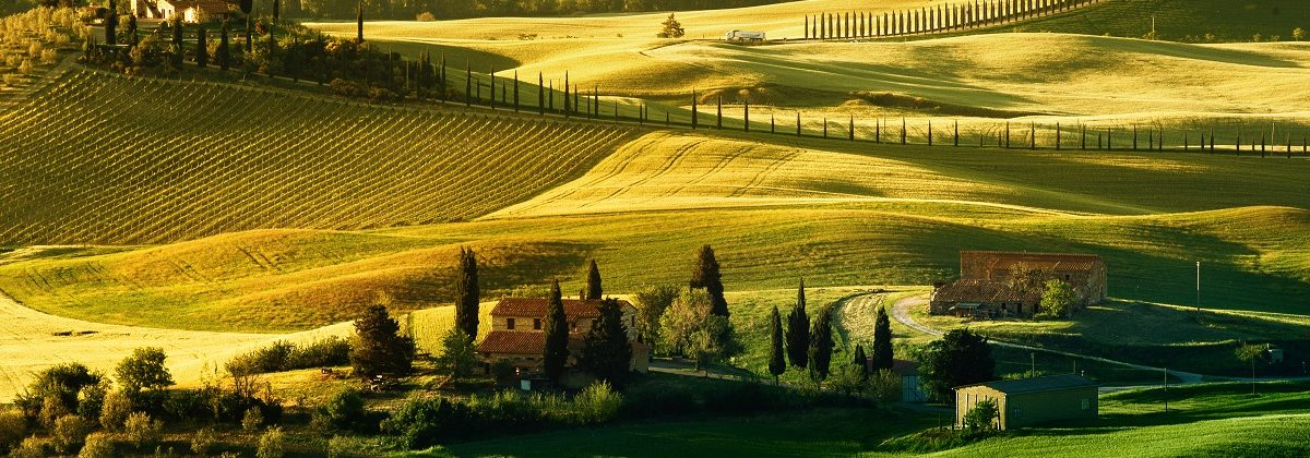 Slide Xmas special Italian wines