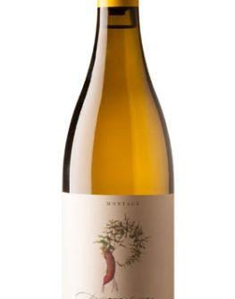 Patatsfontein, Ron Burgundy Wines